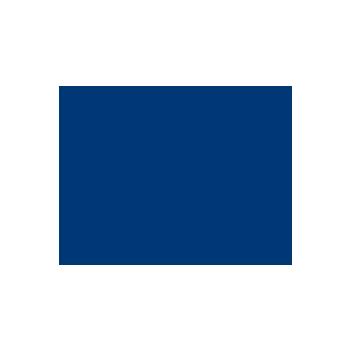 logo_albert_einstein_350x350
